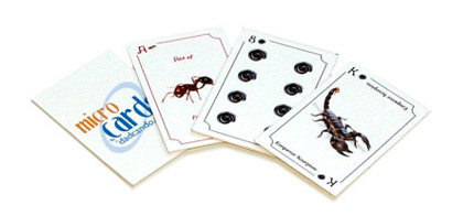 MicroCards - Printable Playing Cards - Creepy Crawlies Set
