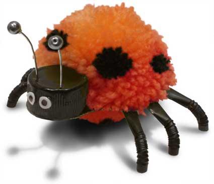 pompom Ladybird, ladybug