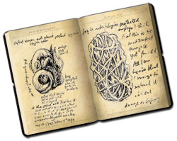 Dragon journal with drawings