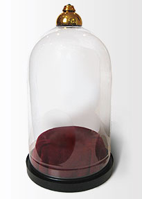 Victorian domed glass case made from soda bottle