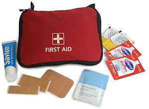 simple first aid kit for the car