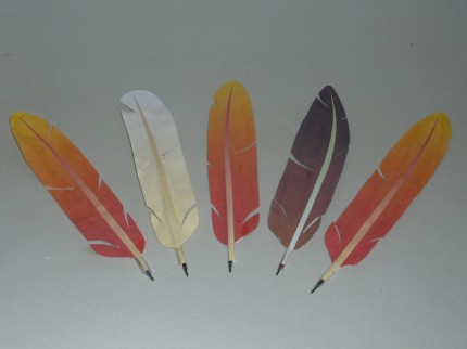 jokate's Feather Quills